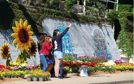 Rực rỡ đường hoa đón chào Festival hoa Đà Lạt
