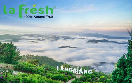 LangBiang có gì mà khiến du khách say mê?